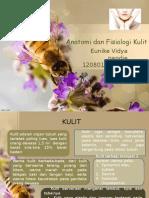 Presentasi Anatomi Dan Fisiolofi Stase Kulit