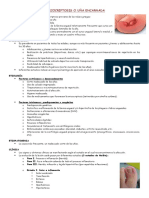 6. Onicocriptosis o u•a Encarnadab