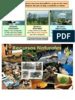 Conservar El Medio Ambiente y La Biodiversidad