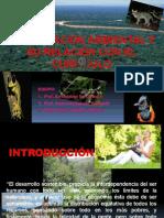La Educación Ambiental y Su Relación con El Curriculo Nacional 2016
