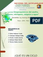 Ciclos Biogeoquímicos - Grupo 6