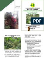 Boletin Conservacion de Suelos Cafe (1)