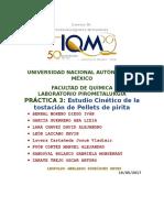 Practica-Estudio-Cinetico-de-pellets-1.docx