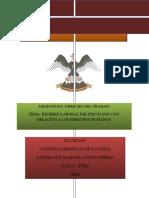 Régimen Laboral Del Psicólogo y La Relación Con Los Derechos Humanos Off
