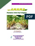Banana Growing Manual-1 NETAFIM