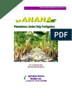 Banana Growing Manual-2 NETAFIM