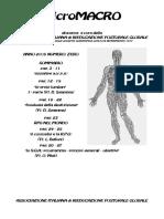 100202199-00-Micromacro-Zero.pdf