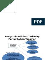 Presentation1 Salin