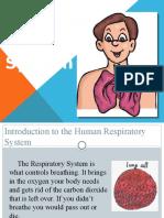 BIO Respiratory System