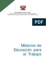 Modulos EPT - Publicacion.pdf