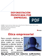 desarrollo-deforestacion