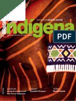 FUNAI_Revista_Brasil-Indígena_n.02_2006.pdf