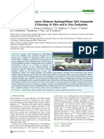 Chitosan Hydrogel, Nano ZnO Composite