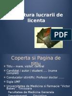 Curs 1 Structura Lucrare Licenta