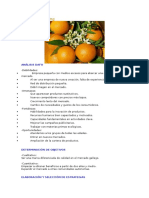 Plan de Marketing Naranja