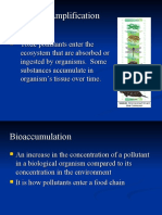 biological-amplification