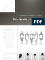 Distrofia Muscular Duchenne Becker