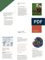 piggy flu project