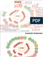 Antibiotika.pdf