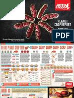 Agro Crops Peanut Crop Report