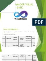 Programador Visual Basic