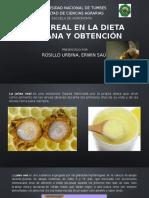 Presentacion Apicultura