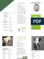 sf doggy daycare brochure