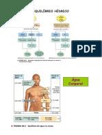 Aula 3 - Equilibrio hidrico_2.pdf