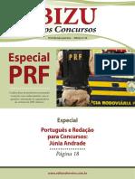 bizu_24_parte_9.pdf