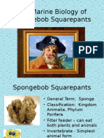 The Marine Biology of Spongebob Squarepants