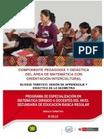 Didactica de La Matematica en Educacion Secundaria Ccesa007