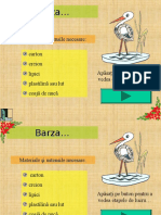 Barza.ppt