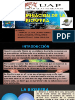 3 Contaminacion de La Biosfera