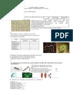 guia   de  reproducción  2017.docx