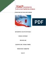 INFORME FINAL DE FISIOLOGÍA HEMATOLOGICA.docx