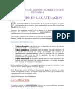 el-proceso-de-la-castracion-1222354128262596-8