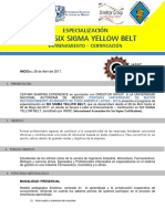 Six Sigma Yellow Belt (4) (1)
