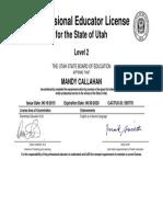 level 2 teaching license
