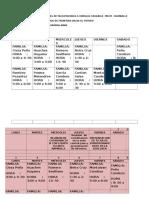 Cronograma de Visitas de Facilitadoras a Familias Usuarias Pncm