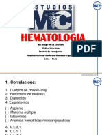 170417 Int Hematologia