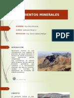 Rios-Paul-N4-SI.pptx