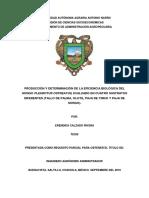 Produccion y Determinacion de La Eficiencia Biologica Del Hongo Pleurotus Ostreatus, Evaluado en Cuatro Sustratos Diferentes (Tallo de palma, Olote, Paja de trigo, Paja de sorgo)
