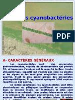 Cours II Cyanobactéries Micro Bio