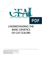 understanding-cat-colors.pdf