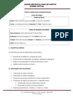 Plano de Estágio_Ensino Fundamental Anos Finais e Médio
