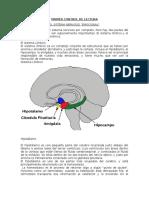 Control de Lectura- Procesos Afectivos-el Sistema Nervioso