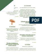 Herbolaria Enciclopedia