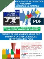 PROYECTO - Estrategia y Proceso de Articulacion en El PTMS