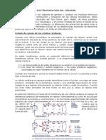 Electrofisiologia Del Corazon