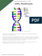 Ativação Do DNA, Atualização e Ascensão